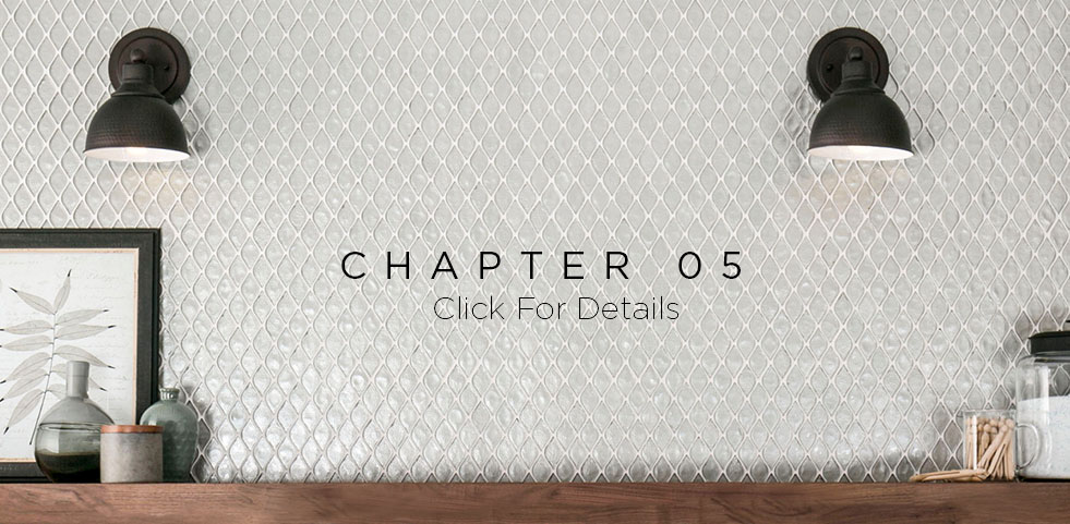 Chapter 5 web